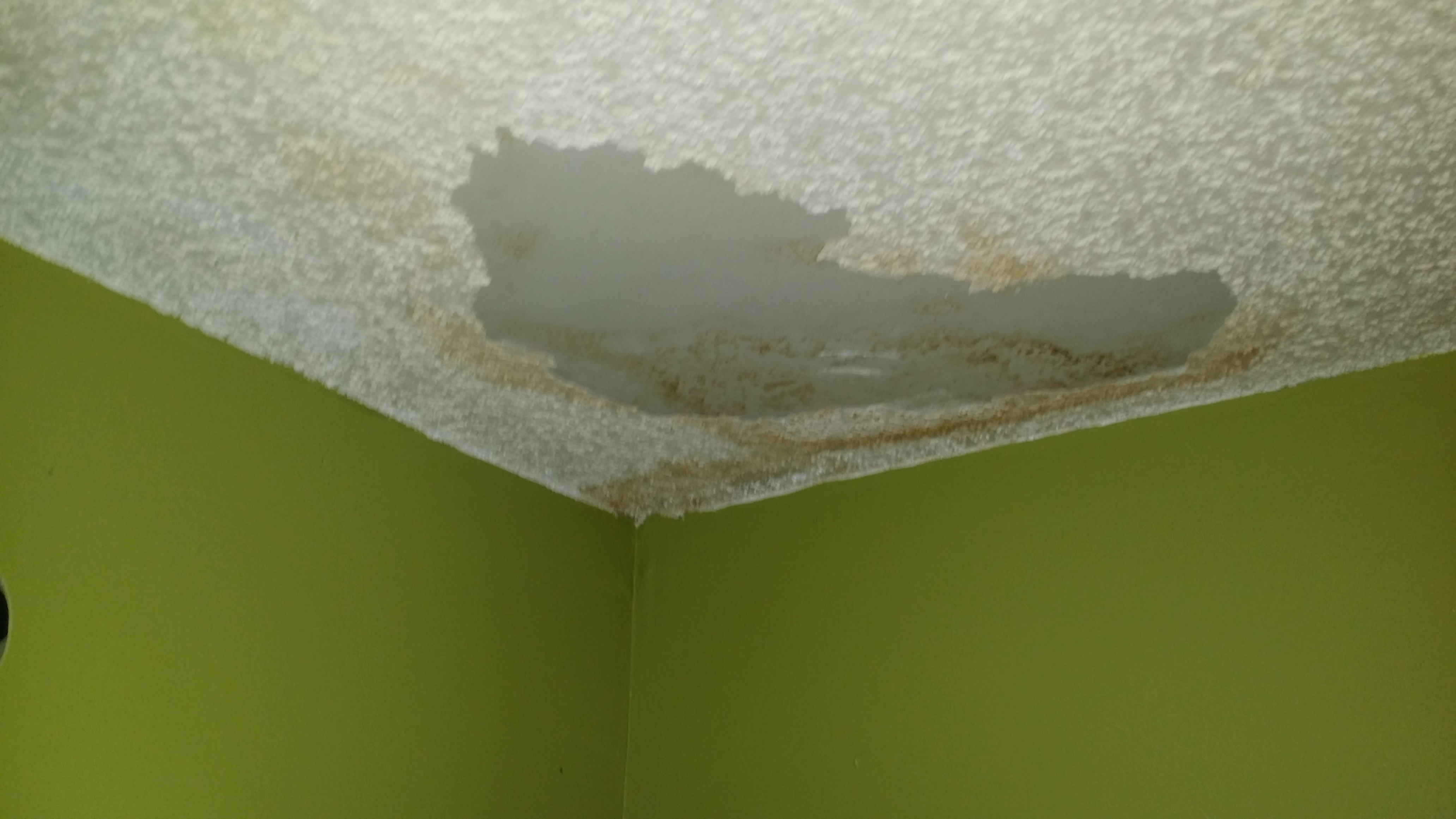 Water Stains From Roof Leak