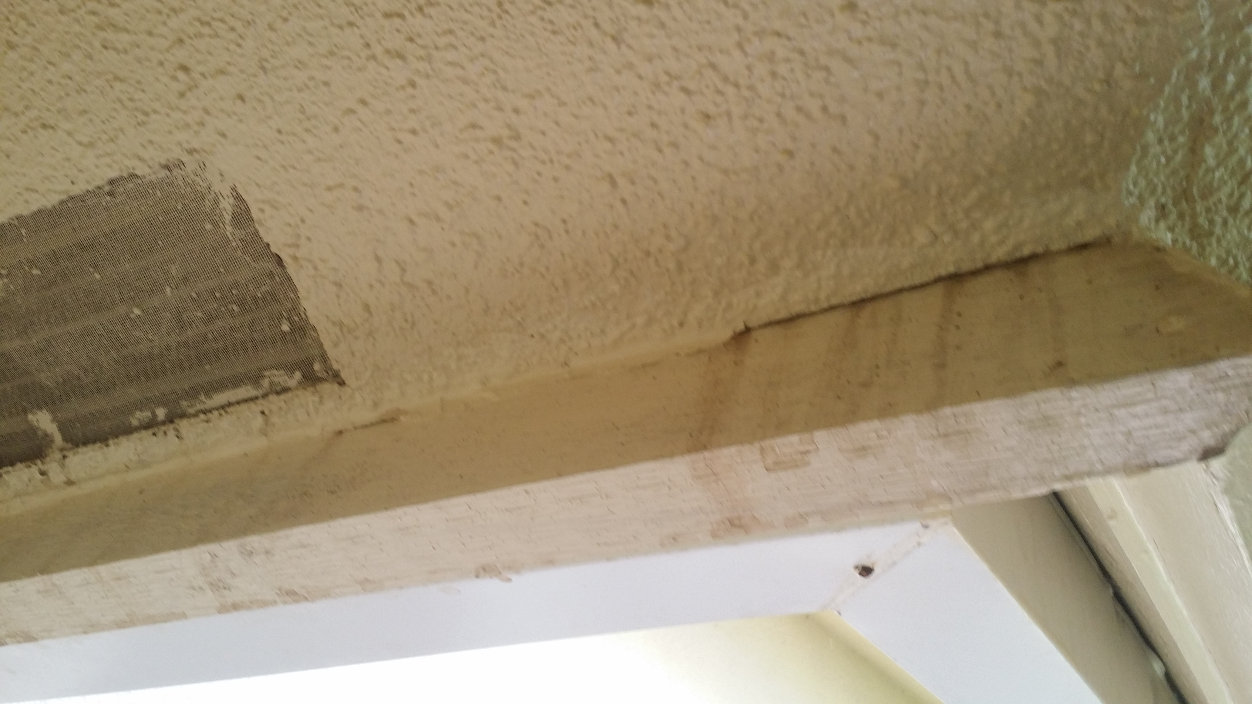 Damaged Fascia From Roof Leak