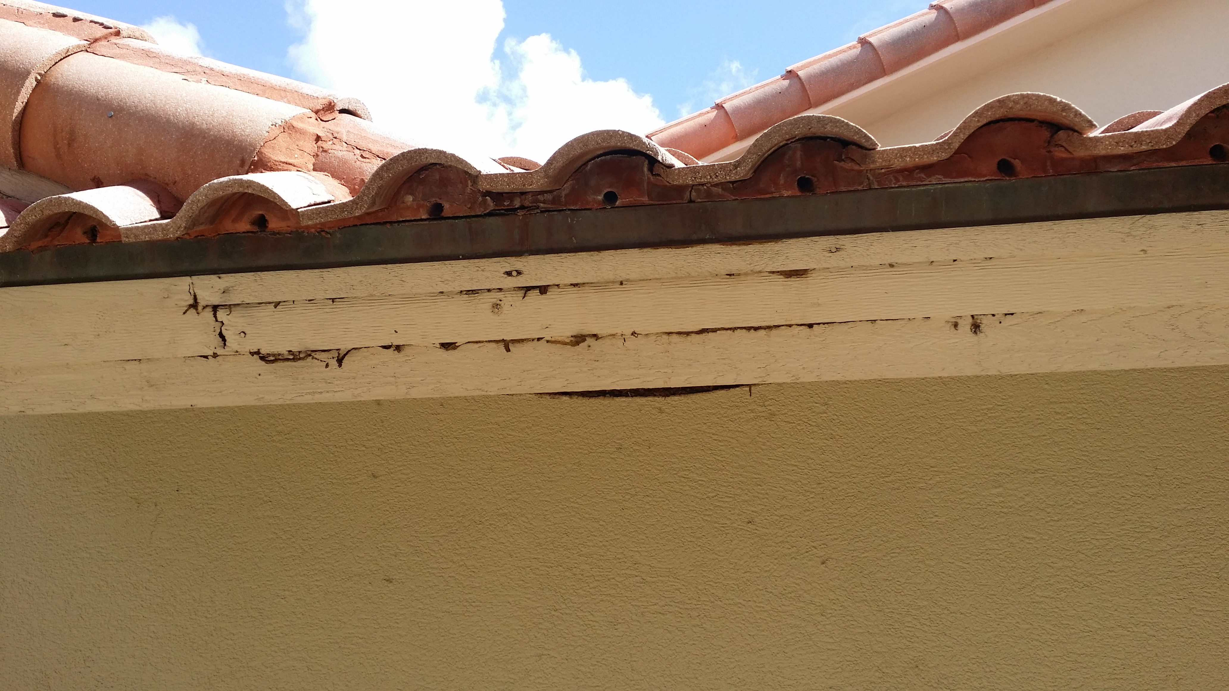 Rotted Fascia from Roof Leak